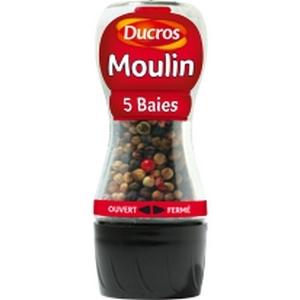 Ducros 5 baies moulin 24g