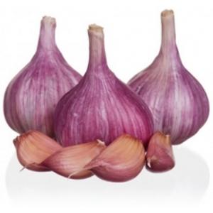 Ail violet le kg