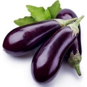 Aubergine violet le kg