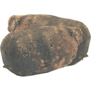 Ignames costa rica (1kg100 et 1kg200) le kg