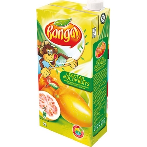 Banga cocktail multifruits 2l