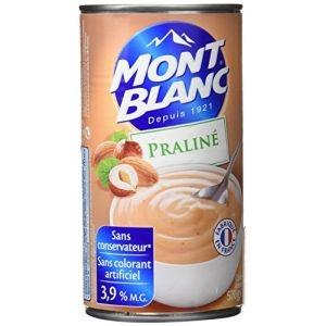 Mont blanc crème praliné 570g