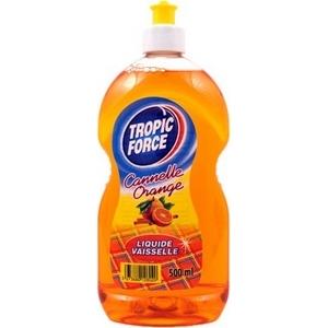 Chlorex liquide vaisselle cannelle orange 500ml