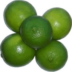 Citron vert le kg