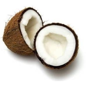 Noix de coco sec la pièce