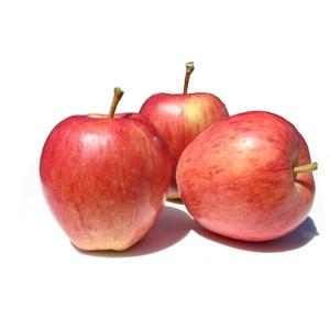 Pomme royal gala le kg